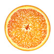 cross section of juicy orange on white background , fruits