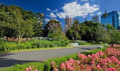 Garden in Melbourne, Victoria, Australia