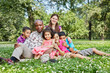 Big interracial family of six sits embraced in grass