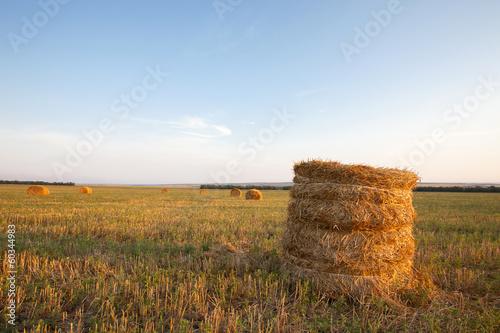 Leinwandbild Motiv haystacks on field