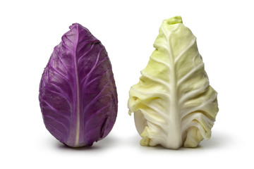 Purple and green pointed mini cabbage