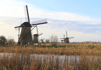 Kinderdijk early morning sun