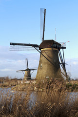 Two Kinderdijk windmills