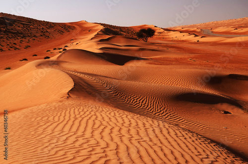 Sandy desert Wahiba in Oman, Near East