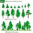 Summer coniferous forest. Set 3.