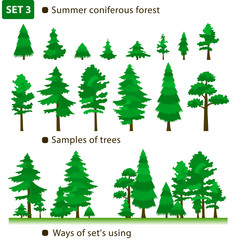 Summer coniferous forest. Set 3.
