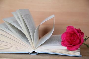 Rose auf aufgeschlagenem Buch