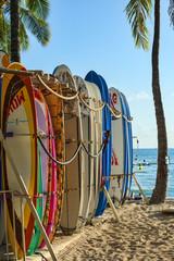 USA-Hawaii-Oahu-7982