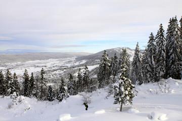 panorama du Massif du Jura