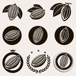 Cacao beans label and icons set. Vector - 60353567