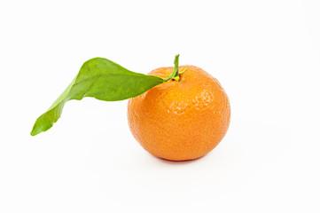 Mandarino con Foglia