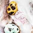 Colored Quail Eggs with white feathers macro. HQ photo of quail