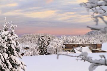 paysage enneigé du Jura