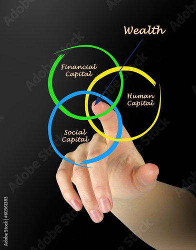 Wealth diagram