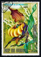 Postage stamp Equatorial Guinea 1974 Lady's Slipper Orchid