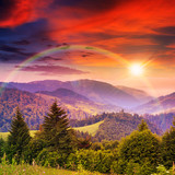 rainbow in coniferous forest on a steep mountain slope at sunset