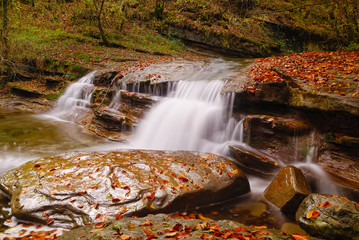 cascade in the park in autumn