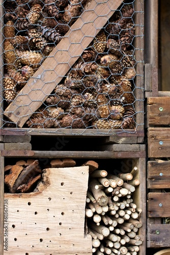 In de dag Bamboo Insektenhotel Detail