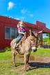 child riding a miniature donkey