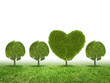 We love our planet