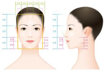 女性の顔のバランス