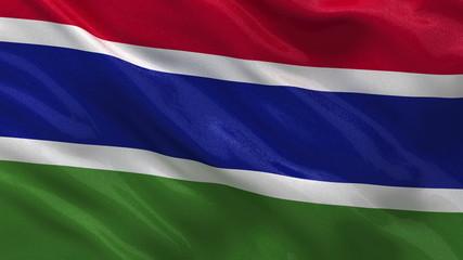 Flag of Gambia waving in the wind - seamless loop
