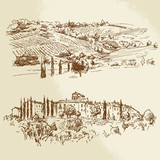 Fototapety vineyard, romantic landscape