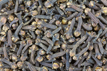 Background photo of dried Cloves