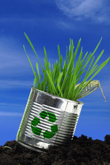 Can with growing grass on soil and blue sky
