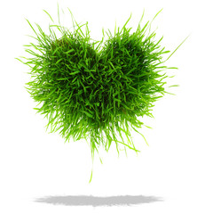 Green heart made of grass isolated on white background