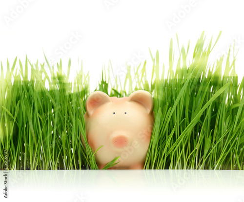 Piggy bank with green grass isolated on white background