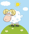 Cute Ram Sheep Cartoon Mascot Character On A Hill
