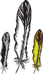 artistic bird ink feather