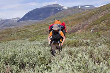 Kungsleden-Trekking in Schwedisch-Lappland