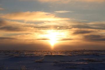 Северная тунда под лучами северного солнца