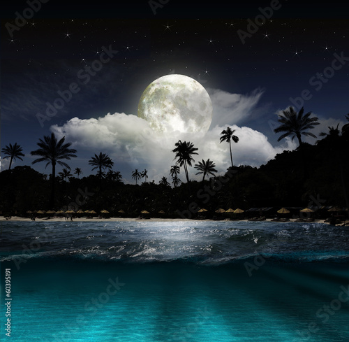 Staande foto Palm boom Fantasy landscape - moon, lake and fishing boat