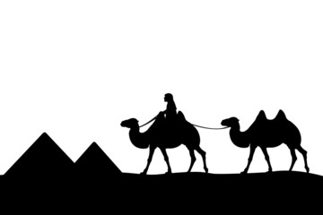 Man on the camel of the pyramids.