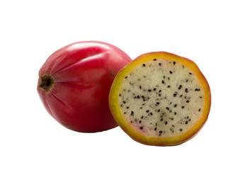 Apple cactus .