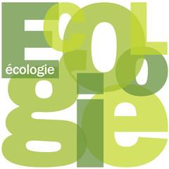 """Mosaïque de Lettres """"ECOLOGIE"""" (environnement pollution planète)"""