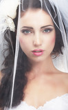 Delicacy. Caucasian Woman Hidden behind Traditional Bridal Veil