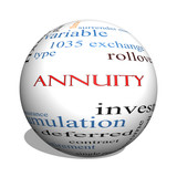 Annuity 3D sphere Word Cloud Concept poster