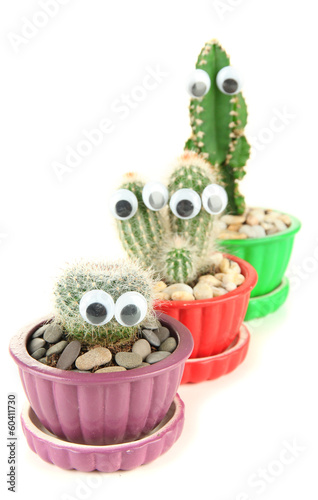 Foto op Canvas Azalea Cactuses in flowerpots with funny eyes, isolated on white