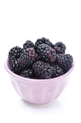 bowl of fresh blackberries isolated