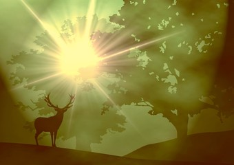 Art - deer in the woods - sunrise - all in a fog