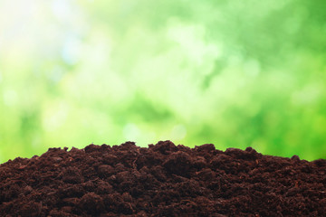 Spring soil background