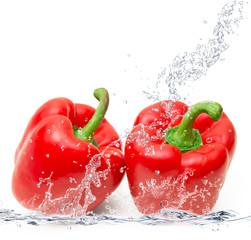 peperoni rossi splash