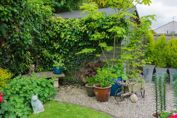 Suburban garden with shed and plant containers