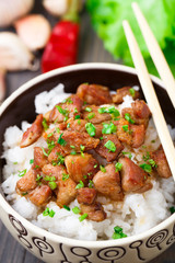 Bowl of rice with meat