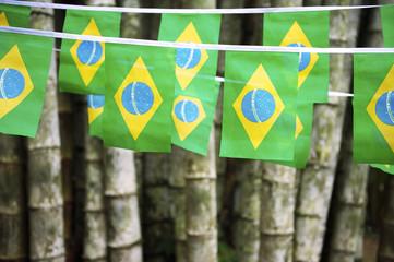 Brazilian Flag Bunting Hanging Bamboo Jungle