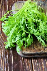 fresh  green arugula for salad